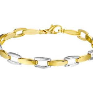 The Jewelry Collection Armband 6,9 mm 19 cm - Bicolor Goud (8718834250561)