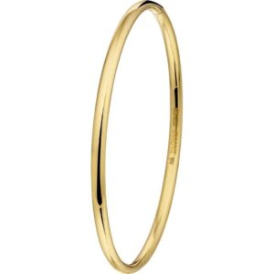The Jewelry Collection Bangle Scharnier Massief Bolle Buis 3 X 61 mm - Verguld (8718834429677)