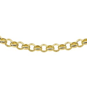 The Jewelry Collection Ketting Jasseron 5,0 mm 45 cm - Goud (8718834425969)