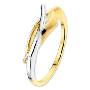 The Jewelry Collection Ring - Goud (8718834301379)