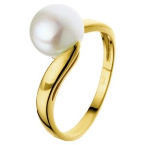 The Jewelry Collection Ring Parel - Goud (8718834189298)